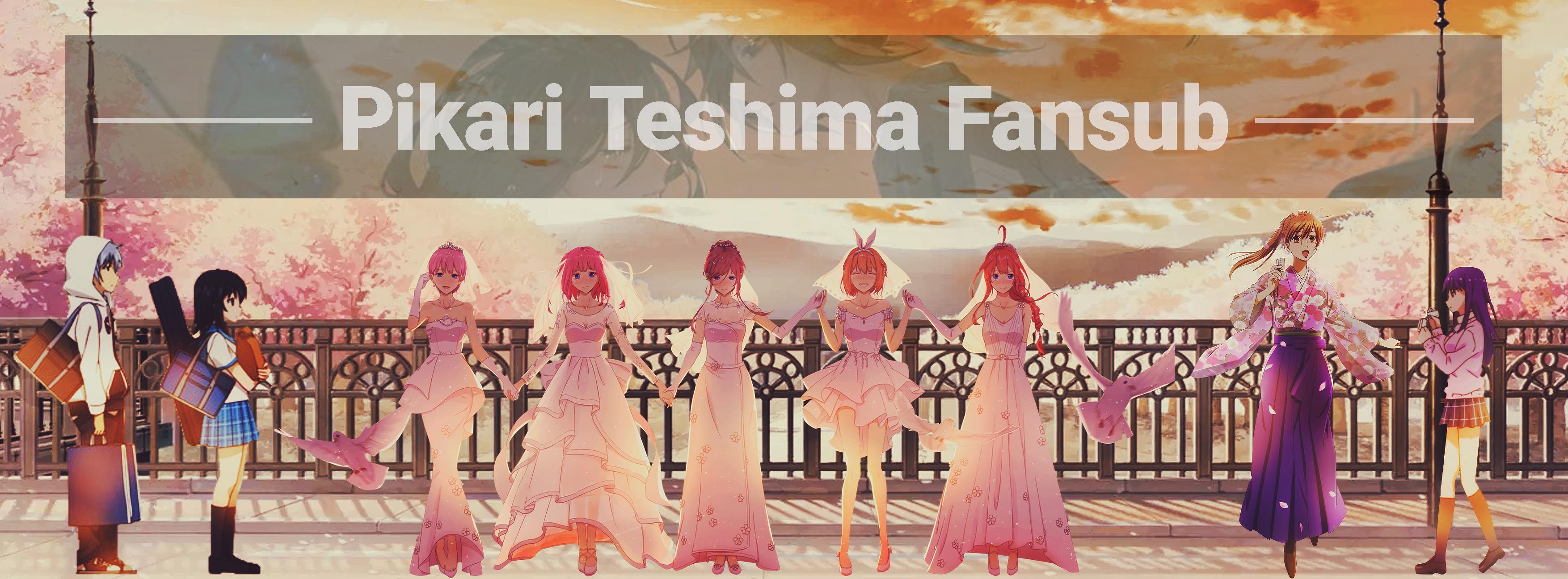 Bannière Pikari Teshima